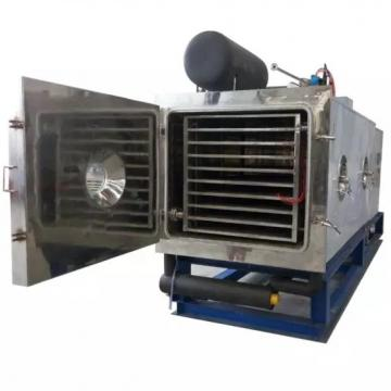 Citrus, Berry Drying Equipment, Fruits Dehydration Oven