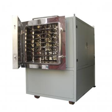Hot Air Heat Pump Vegetables Onion Asparagus Lettuce Drying Machine