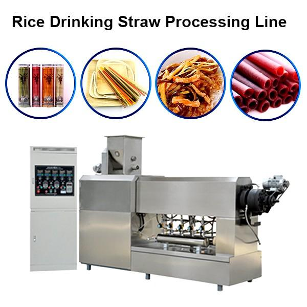 Best Quality Stainless Steel Degradable Straw/Pasta Straw Machine / Processing Line #1 image