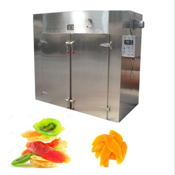 China Technical Fruit Drying Equipment Factory Direct Sale #1 image