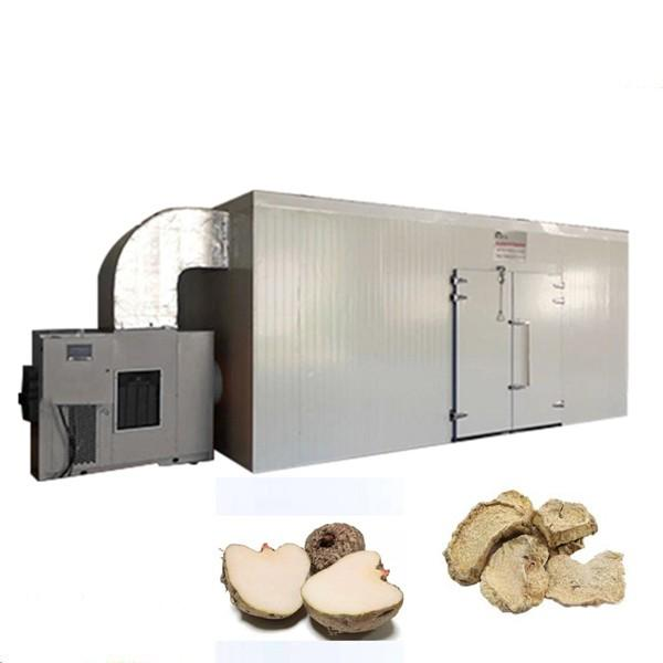 Fruits Tray Dryer/Air Source Vegetables Dryer/ Good Efficient Food Drying Machine #1 image