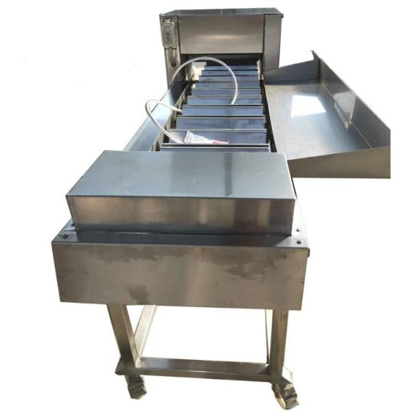 Floating Fish Feed Dry Dog Pet Food Processing Machinery #1 image