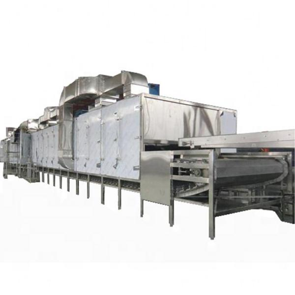 Hot Selling Cereal Puffing Equipment Corn Puffed Snack Bulking Machine Cheese Curls Production #3 image