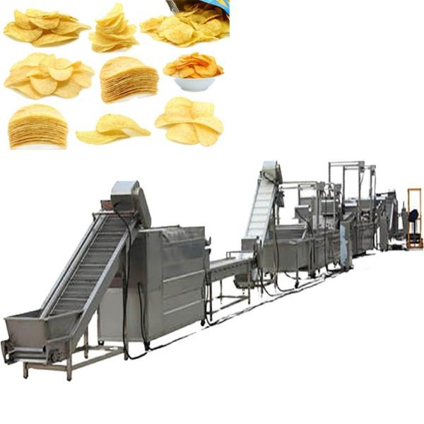 Automatic Potato Chips Puffed Snacks Making Machine Price Slanty Snack Bar Twin Screw Extruder Prices Puffed Corn Chips Snacks Food Making Machine #3 image