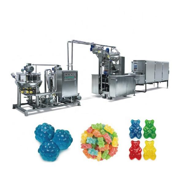 Various Shapes Fish Food Processing Line /Pet Food Production Line #3 image