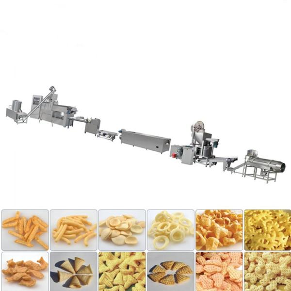 Dry Nutritional Dog Food Machine Pet Food Extrusion Machine Extruder Production Line #2 image