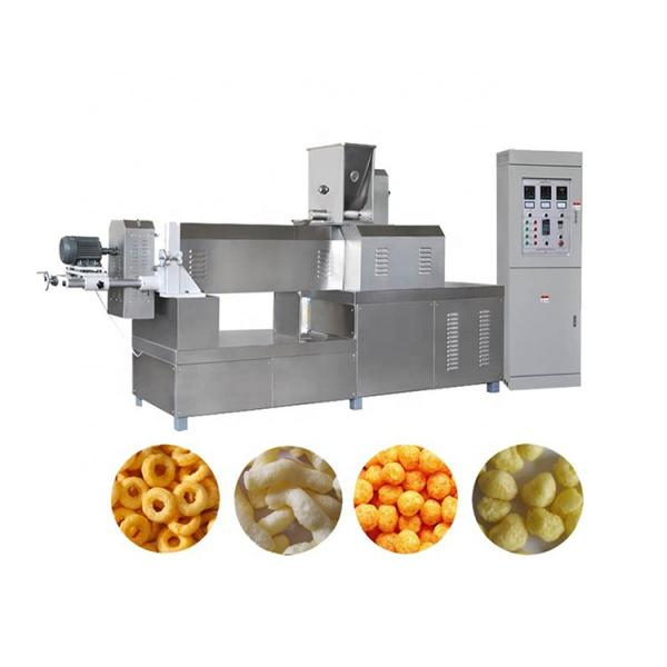 Pet Food Dog Food Floating Sinking Fish Feed Production Line #2 image
