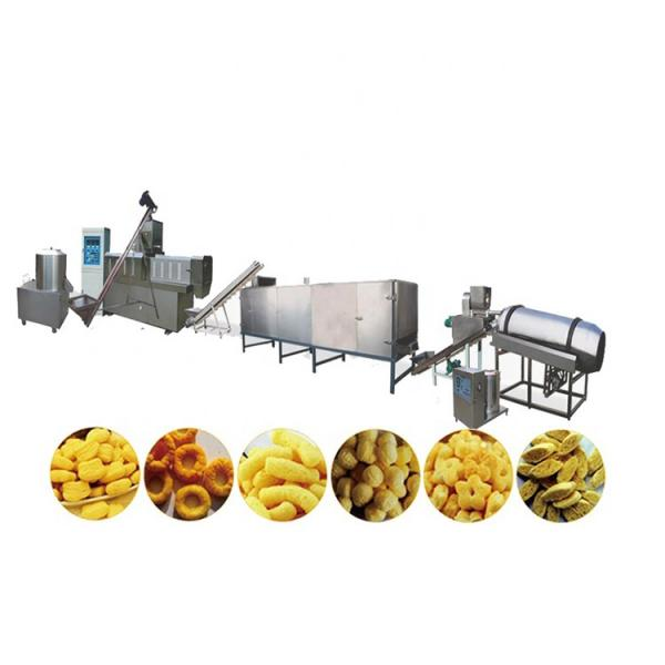Pet Food Dog Food Floating Sinking Fish Feed Production Line #3 image